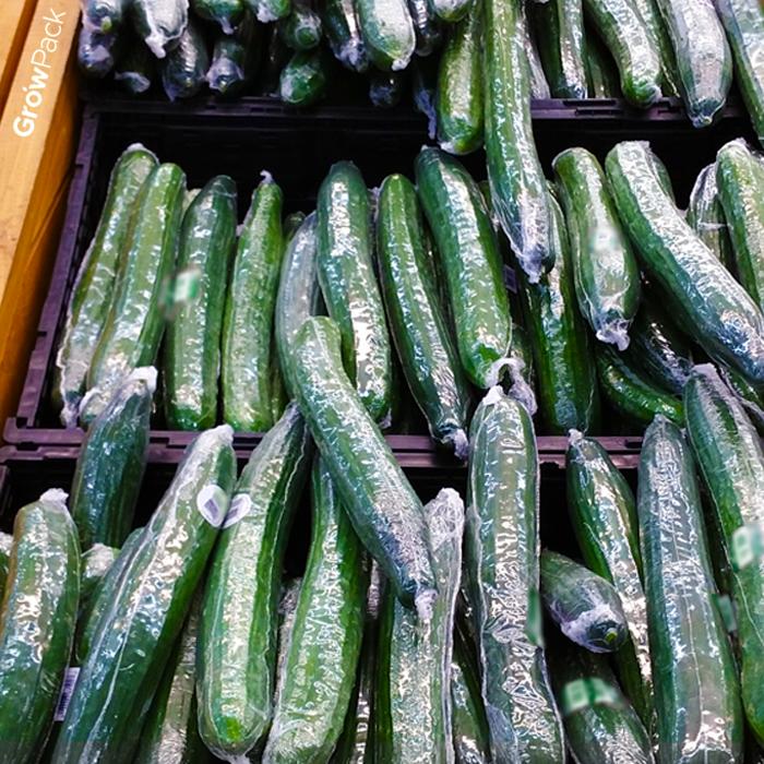 Los pepinos envueltos individualmente se apilan en una caja de envío de plástico