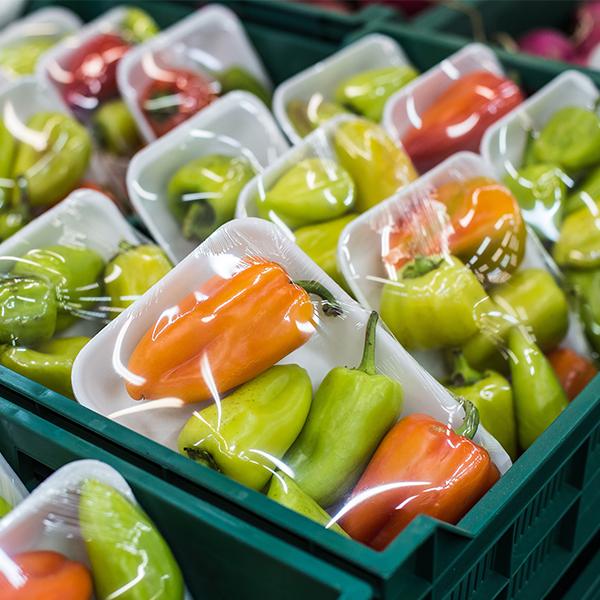 Pimientos picantes verdes y naranjas en bandejas blancas envueltos en envoltura retráctil se apilan en cajas de envío