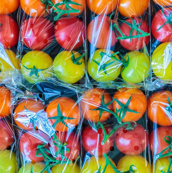 las bandejas de tomates rojos, naranjas y amarillos envueltos en plástico puestos uno al lado de la otro en dos filas